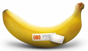 CFUK Banana