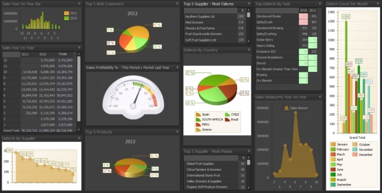 Rubicon ERP Dashboard
